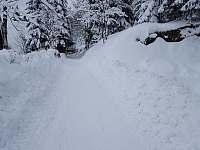 Příjezdová cesta v zimě - Ostružná