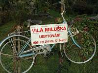 Vila Miluška - pronájem Černá voda