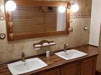 koupelna - chalupa k pronájmu Staré Město pod Sněžníkem