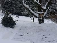 Chalupa Hajmrlov - chalupa - 33 Staré Město pod Sněžníkem