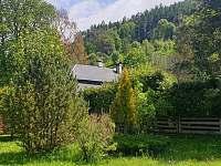 Pohled ze zahrady - chalupa k pronájmu Holčovice - Spálené