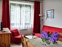Apartmánový dům Pasťák - apartmán ubytování Kouty nad Desnou - 9