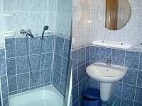 koupelna, wc, sprcha - pronájem apartmánu Velké Losiny