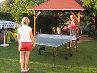 Ping-pong - pronájem apartmánu Velké Losiny