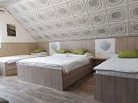 pokoj 4lůžkový - apartmán k pronájmu Velké Losiny