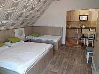 pokoj 4lůžkový - apartmán k pronajmutí Velké Losiny