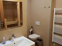 koupelna v přízemí - chalupa k pronájmu Vernířovice