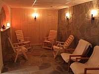 Hotel - penzion - 13 Vidly