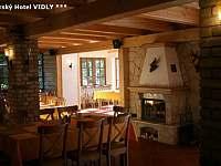 Hotel - penzion - 11 Vidly