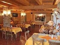 Hotel - penzion - 10 Vidly