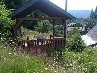 Dědova horská chata - chata k pronájmu - 22 Petříkov