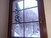 Pohled ven k lesu. - pronájem chaty Petříkov