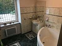 Koupelna přízemí - chalupa k pronájmu Sobotín - Petrov nad Desnou