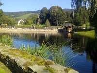 Roubenka u rybníka s rybolovem - srub k pronájmu - 28 Sobotín