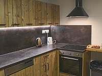 Kuchyně s troubou, varnou deskou a myčkou. - chata k pronájmu Vernířovice