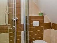 podkrovní koupelna má wc, sprchový kout a umyvadlo