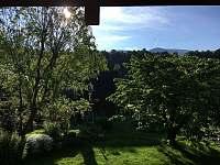 Zahrada - pohled z okna v 1. patře