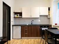 Ubytovani v Karlově - apartmán k pronájmu - 6