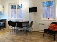 Ubytovani v Karlově - apartmán k pronajmutí - 4