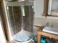 koupelna přízemí 2 - chalupa k pronajmutí Vysoká u Malé Moravy
