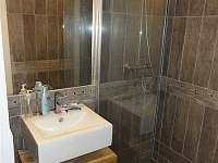 Samostatná koupelna se sprchovým koutem - pronájem chalupy Horní Lipová