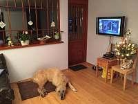 Společenská místnost s LCD televizí a satelitem - Horní Lipová