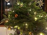 Vánoční Žabaštejn - chalupa k pronajmutí Horní Lipová
