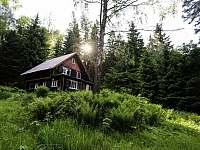 ubytování Malá Morava - Vysoký Potok Chalupa k pronajmutí