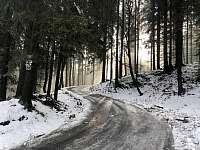 Malá Morava - Vysoký Potok - chalupa k pronajmutí - 6