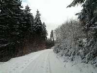 zimní cesta do lázní za chatou 1