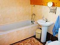 Apartmán č.2-koupelna - chata k pronajmutí Dolní Moravice