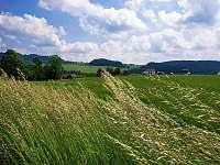 Dolní Moravice - chata k pronájmu - 32