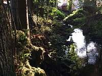 potok za chalupou - k pronájmu Karlov pod Pradědem