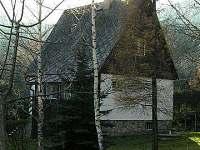 zátiší s břízkami - chata k pronajmutí Filipovice