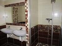 Koupelna - apartmán k pronájmu Loučná nad Desnou