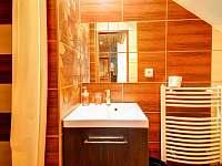Apartmán č. 2 koupelna - Kouty nad Desnou