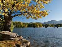 Velký rybník - 4 km od chaty - k pronajmutí Černá Voda - Rokliny