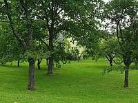 Pohled ze zahrady - pronájem chalupy Vápenná