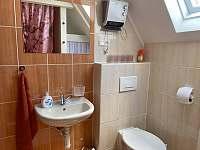 Chatička pod lesem - koupelna - k pronajmutí Suchá Rudná
