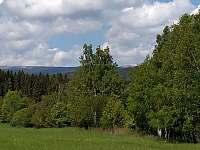Chatička pod lesem - okolí - k pronájmu Suchá Rudná