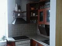 možnost kuchyňky apartmánu