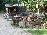 Navštivte lesní bar v Horní Lipové