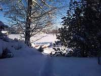 pohled ze dveří chaty - k pronájmu Rejvíz