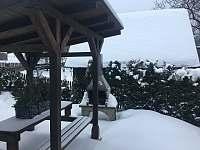 Venkovní posezení - zima - chalupa k pronájmu Horní Moravice