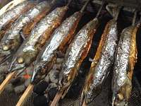 Grilované makrely - každý pátek - ubytování Lipová lázně