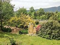 Zahrada - chata k pronájmu Malá Morava