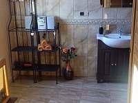 koupelna - apartmán k pronájmu Ondřejovice