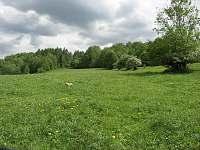 Ondřejovice procházka buldoček