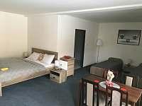 Andělská Hora - apartmán k pronájmu - 3