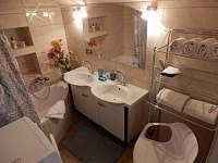 Apartmán koupelna s vanou - pračka, fén, ručníky, mýdla, sprchový gel - ubytování Ludvíkov